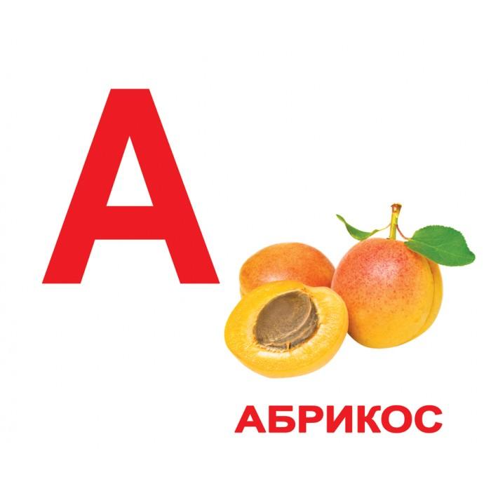 Карточки большие русские с фактами «Алфавит» 34шт