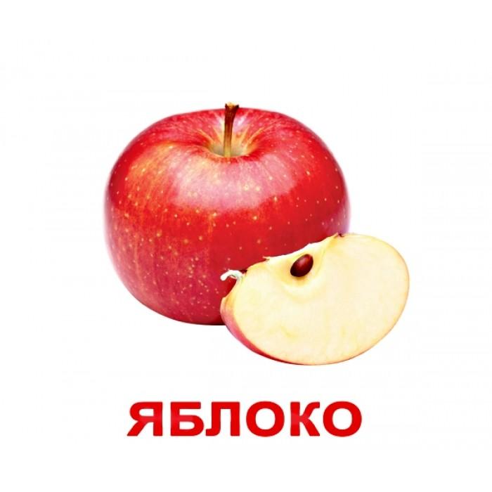 Карточки большие русские с фактами «Мои первые знания» 40шт
