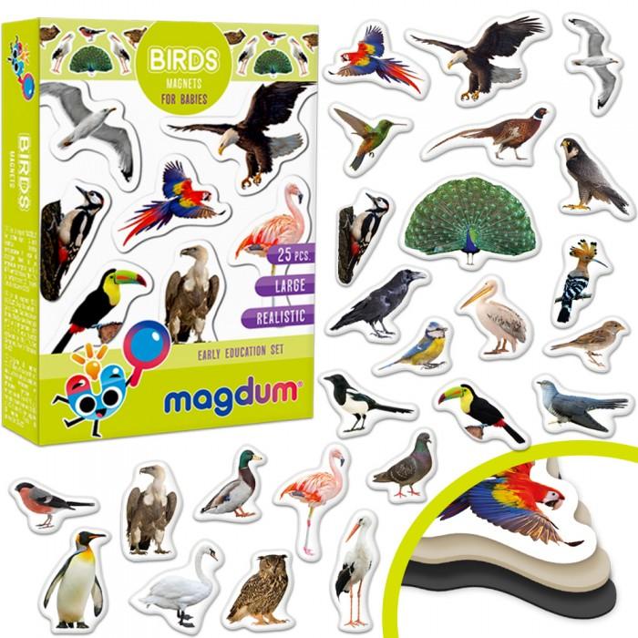 Набор магнитов Magdum «Birds photo»