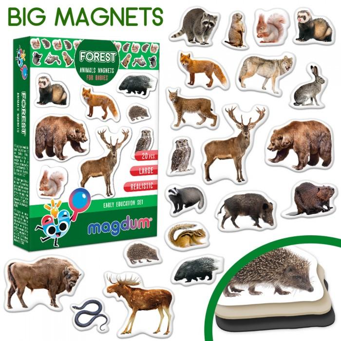 Набор магнитов Magdum «Forest photo»