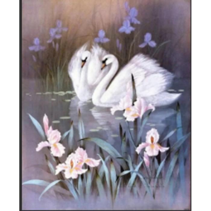 Алмазная мозаика «Лебеди на озере» 30*40см, с рамкой