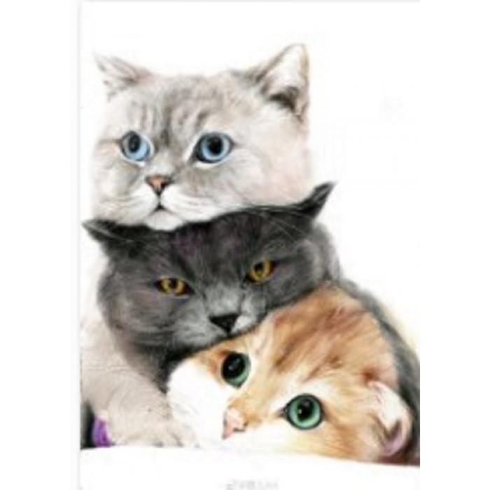 Алмазная мозаика «Кошачье трио» 30*40см, с рамкой