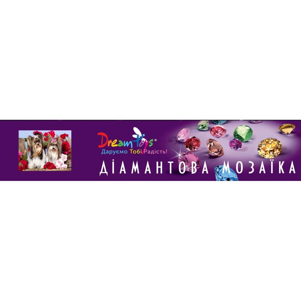 Алмазная мозаика «Радужная аллея», 30*40см, без рамки