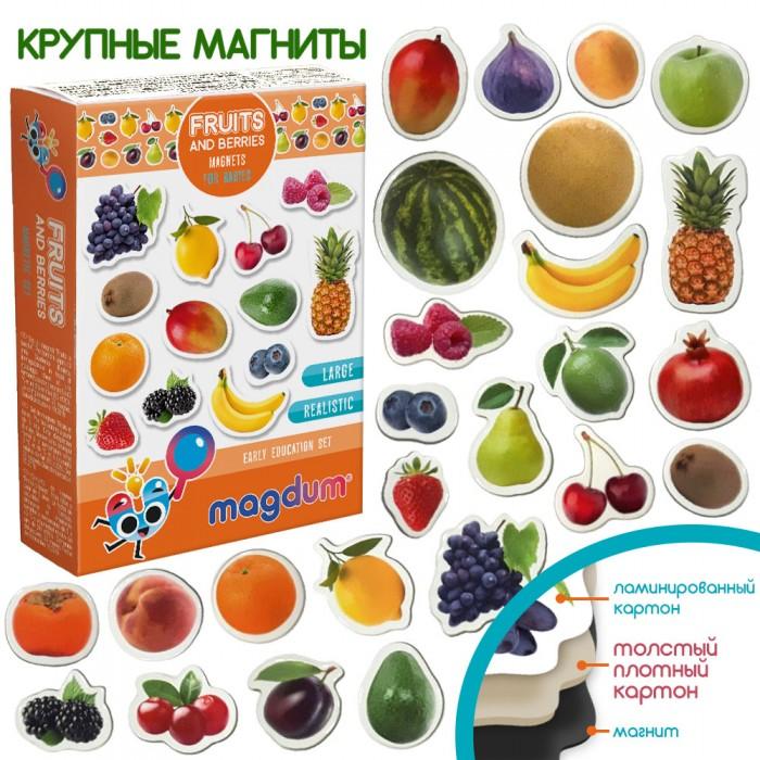 Набор магнитов Magdum «Фрукты и ягоды», 25 магнитов