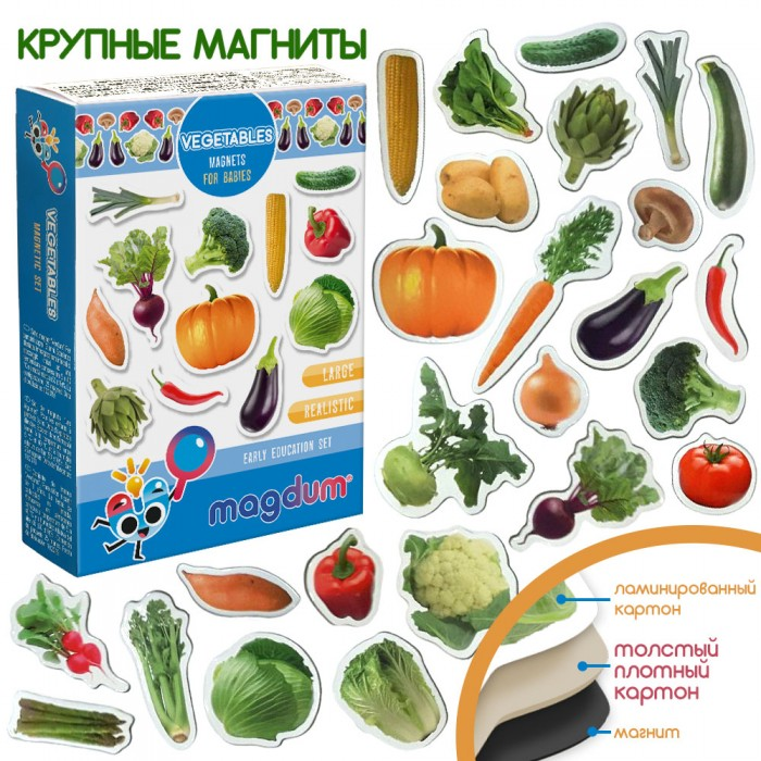 Набор магнитов Magdum «Овощи» 25 магнитов