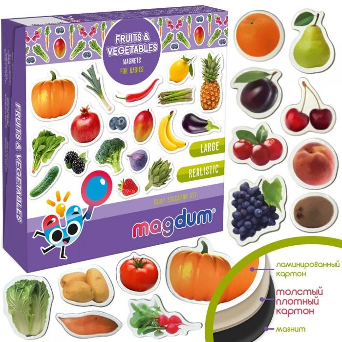 Набор магнитов Magdum «Фрукты и овощи» 50 магнитов
