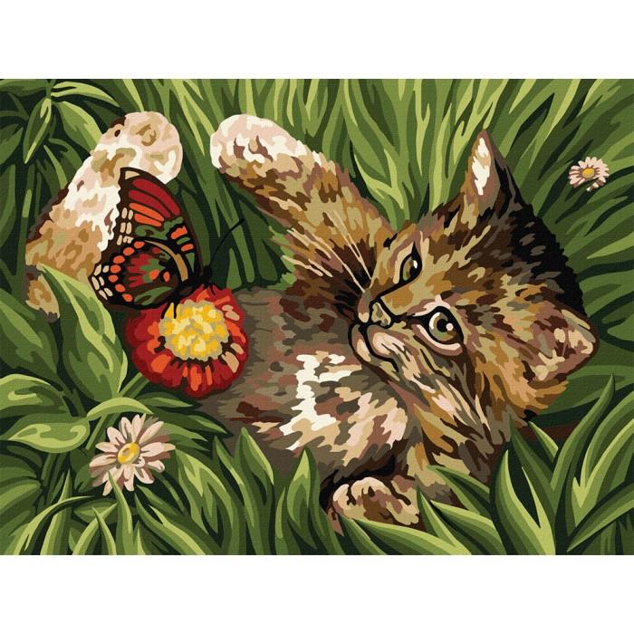 Картина по номерам  №3 «Котенок в траве» 30*40см