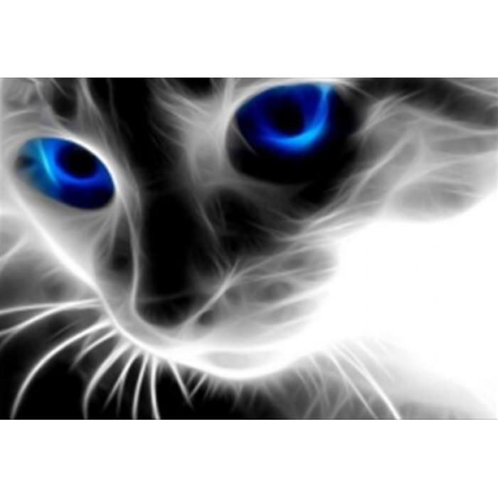 Алмазная мозаика «Голубоглазая кошка», 30*40см, с рамкой