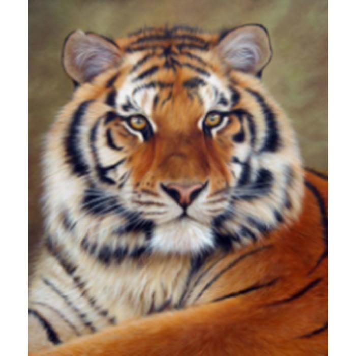 Алмазная мозаика «Величественный тигр», 30*40см, с рамкой