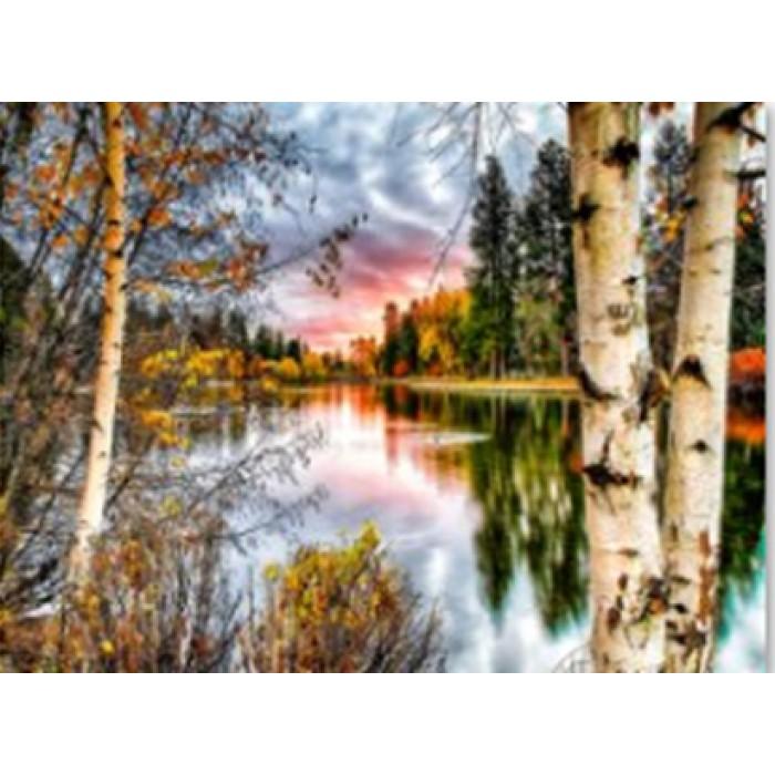 Алмазная мозаика «Осенний лес», 30*40см, с рамкой
