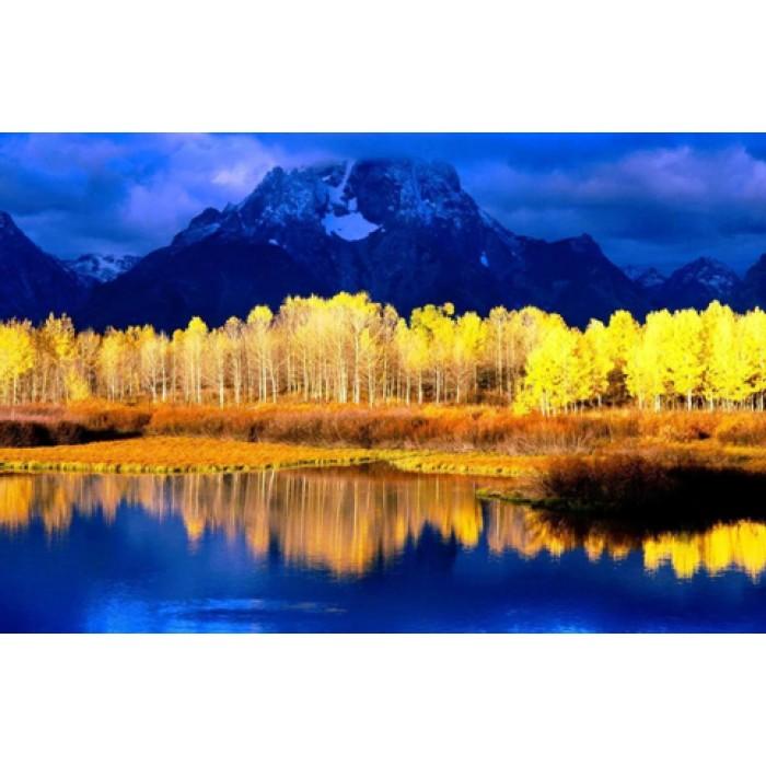Алмазная мозаика «Желтые березы Канады», 30*40см, с рамкой