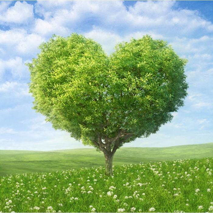 Алмазная мозаика «Вечнозелёное древо», 30*40см, без рамки