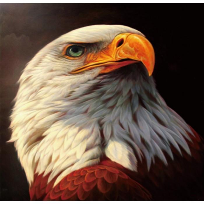 Алмазная мозаика «Гордый орлан», 30*40см, без рамки
