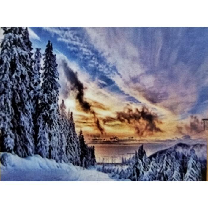 Алмазная мозаика «Заснеженные сосны», 30*40см, без рамки