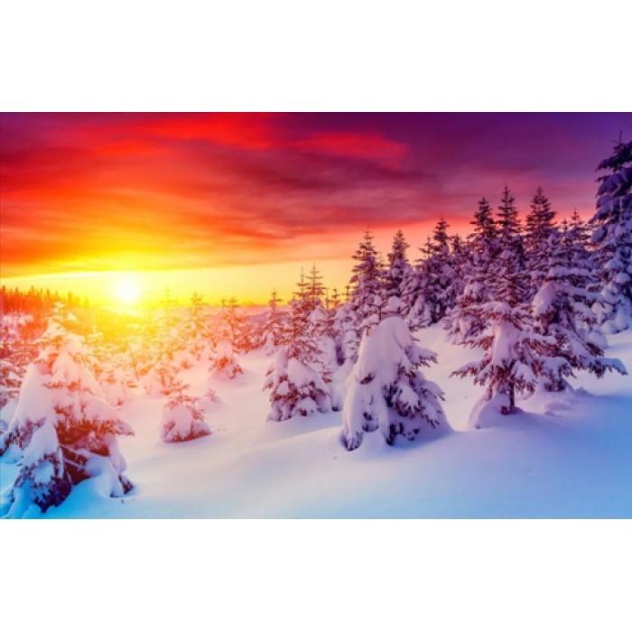 Алмазная мозаика «Молодой лес в снегу», 30*40см, без рамки