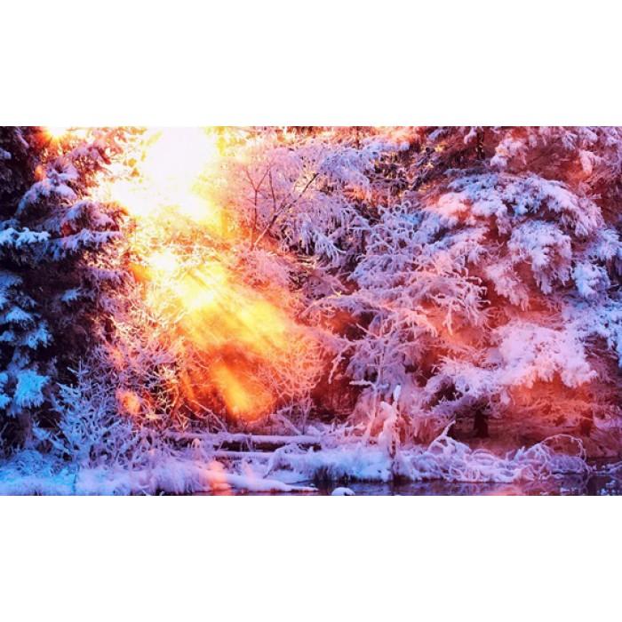 Алмазная мозаика «Лучи солнца», 30*40см, без рамки