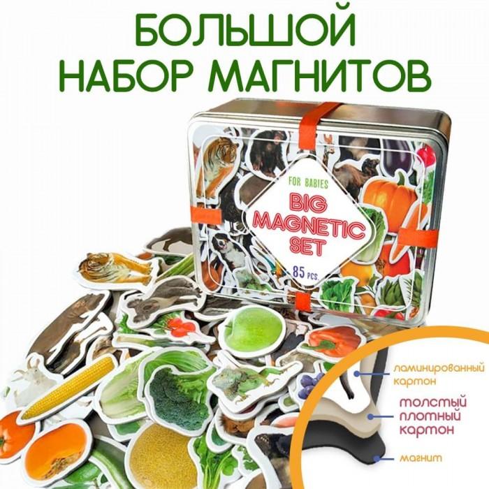 Набор магнитов «Дитячий світ» 85 магнитов Magdum