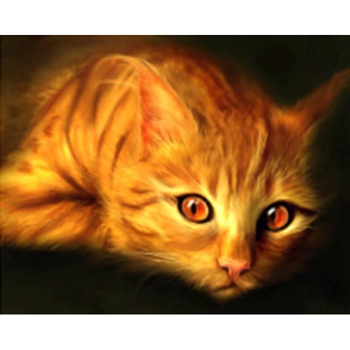 Алмазная мозаика «Огненный кот», 30*40см, с рамкой
