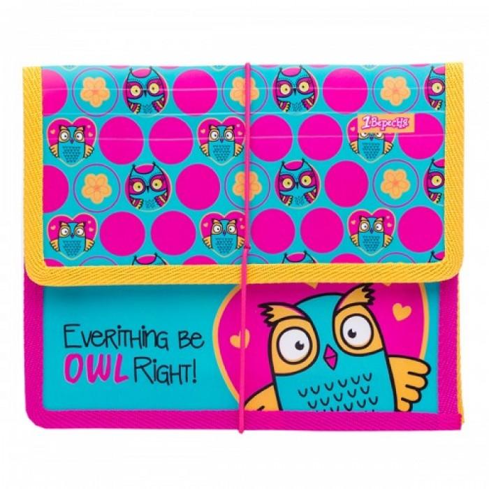 Папка для тетрадей В5 «Owl» пластиковая на резинке
